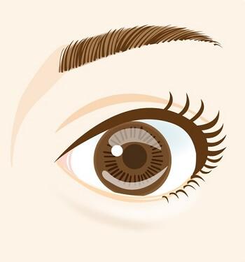 目の色は変化することがある!?年齢や加齢で変化する目の色